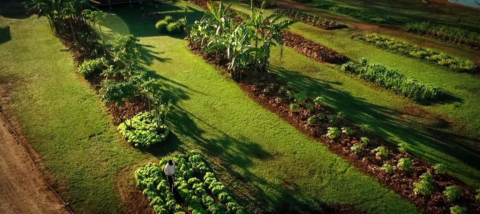 Landscape Gardening Apprenticeships Victoria U2013 Izvipi.com